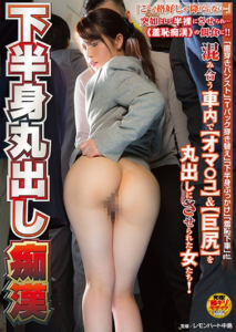 NHDTA-946 Lower Body Bare Molester